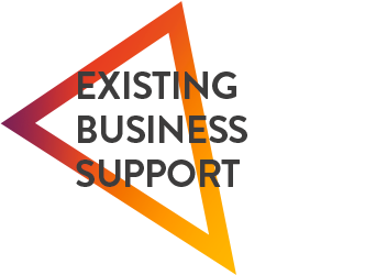 Support of Existing Businesses